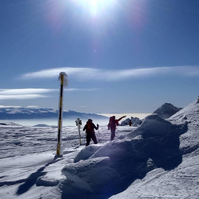 Ски туринг Витоша