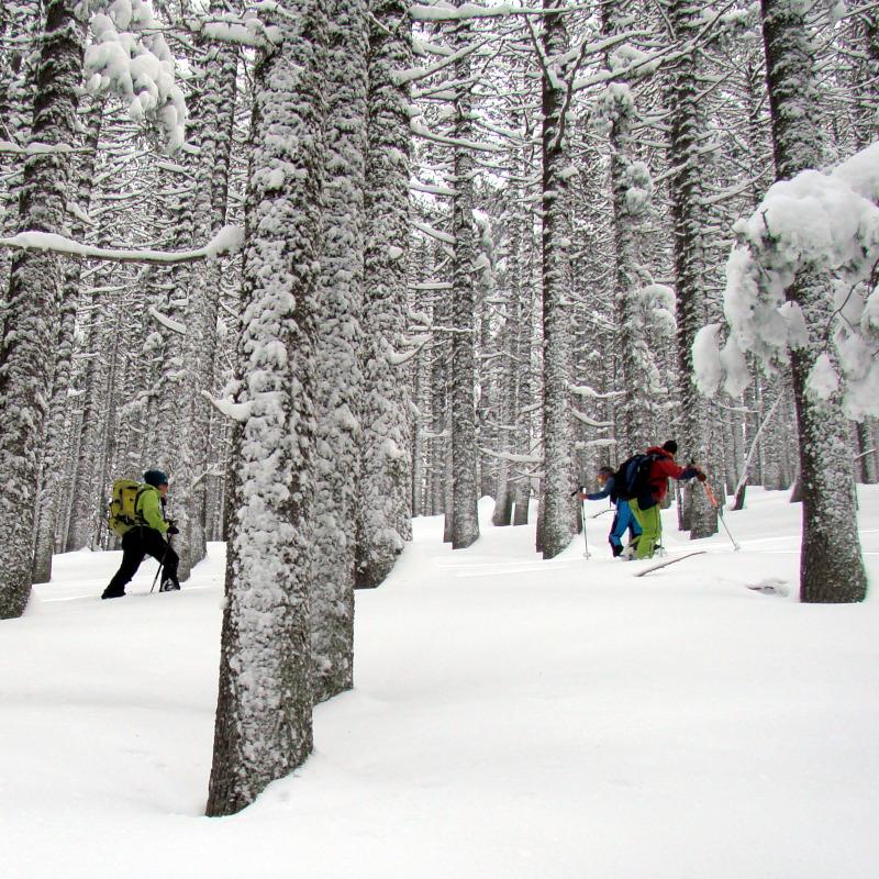 Ски туринг на Яворов